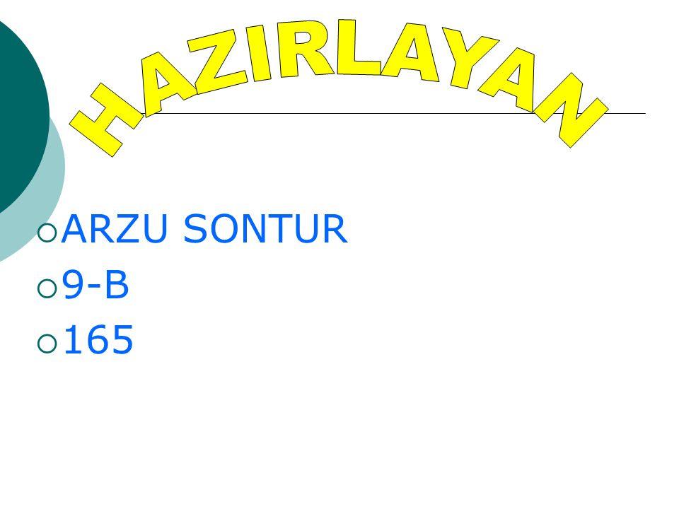  ARZU SONTUR  9-B  165