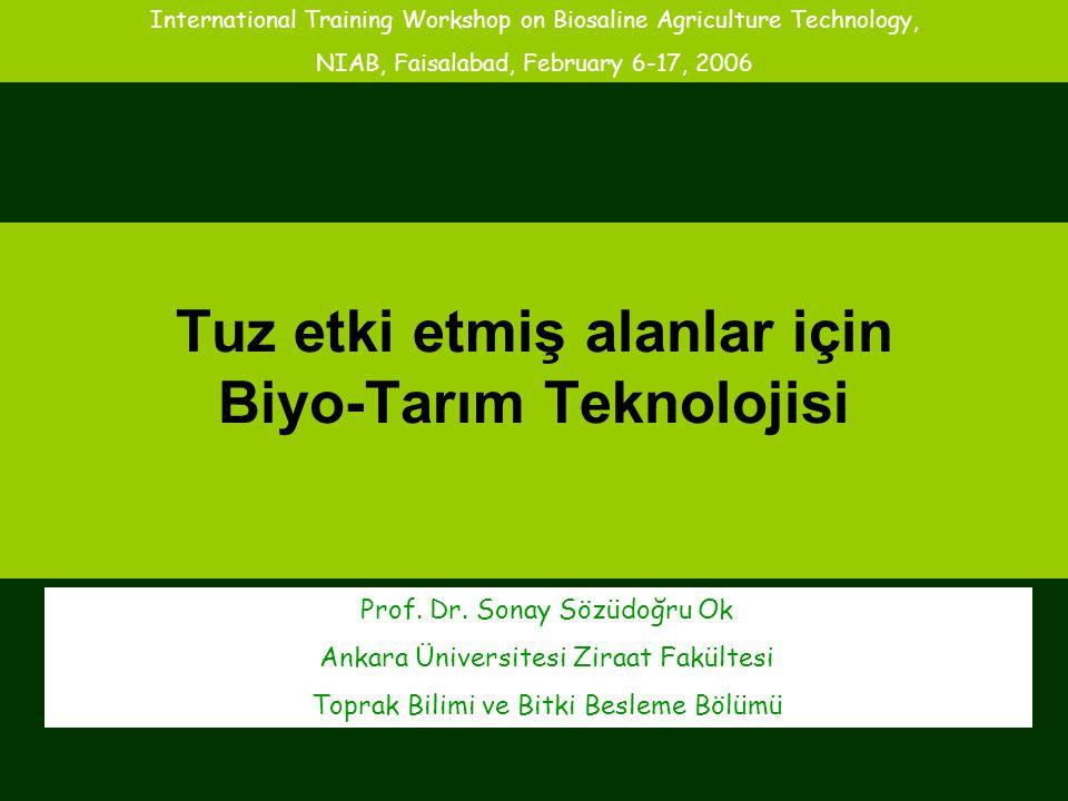 Tuz etki etmiş alanlar için Biyo-Tarım Teknolojisi Prof. Dr. Sonay Sözüdoğru Ok Ankara Üniversitesi Ziraat Fakültesi Toprak Bilimi ve Bitki Besleme Bö