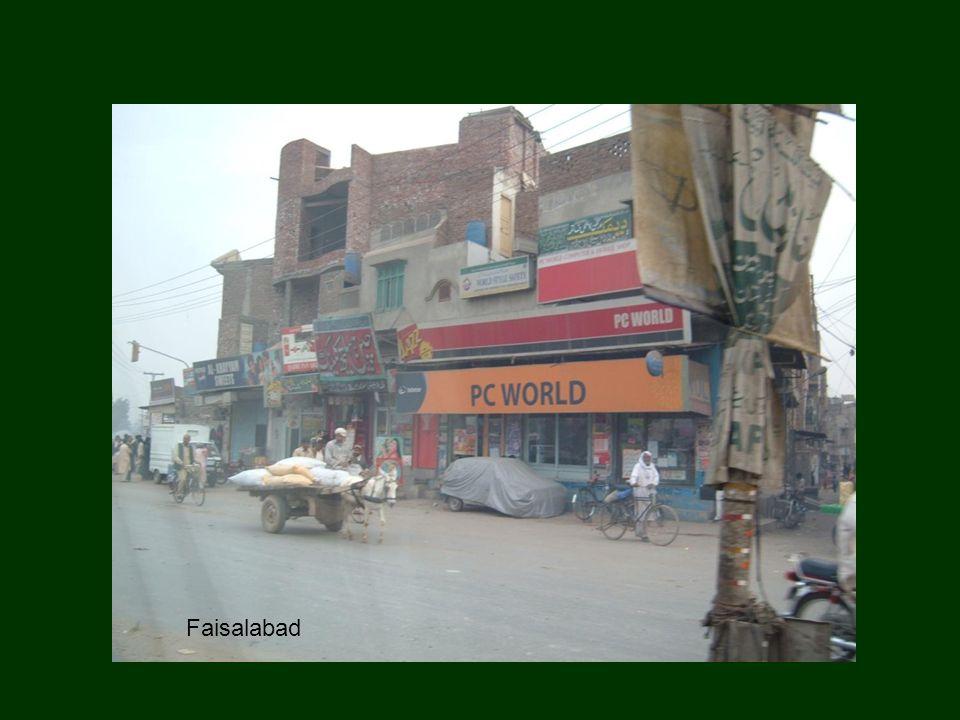 TUZ ETKİ ETMİŞ ARAZİLER (Pakistan) Seyrek vejetasyonlu tuzlu alan Şiddetli tuzlu ve alkali toprak