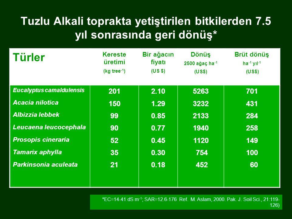 Tuzlu Alkali toprakta yetiştirilen bitkilerden 7.5 yıl sonrasında geri dönüş* Türler Kereste üretimi (kg tree -1 ) Bir ağacın fiyatı (US $) Dönüş 2500