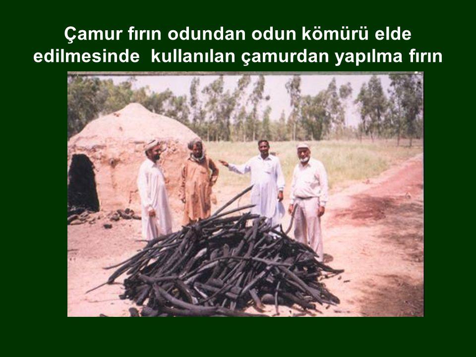 Çamur fırın odundan odun kömürü elde edilmesinde kullanılan çamurdan yapılma fırın