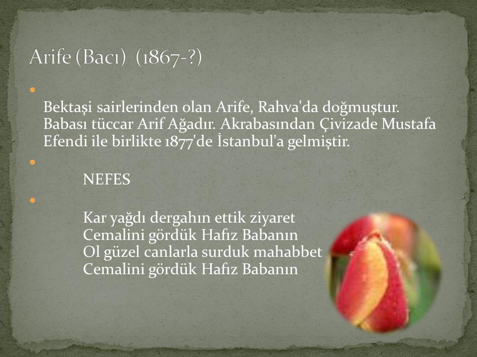Bektaşi sairlerinden olan Arife, Rahva'da doğmuştur. Babası tüccar Arif Ağadır. Akrabasından Çivizade Mustafa Efendi ile birlikte 1877'de İstanbul'a g