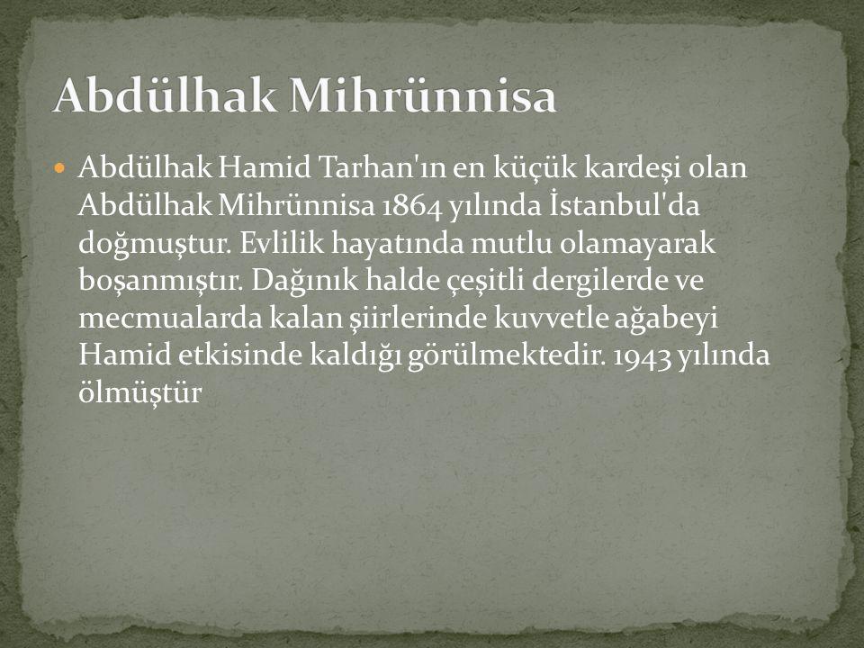 Abdülhak Hamid Tarhan'ın en küçük kardeşi olan Abdülhak Mihrünnisa 1864 yılında İstanbul'da doğmuştur. Evlilik hayatında mutlu olamayarak boşanmıştır.