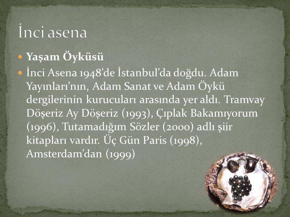 Yaşam Öyküsü İnci Asena 1948'de İstanbul'da doğdu. Adam Yayınları'nın, Adam Sanat ve Adam Öykü dergilerinin kurucuları arasında yer aldı. Tramvay Döşe
