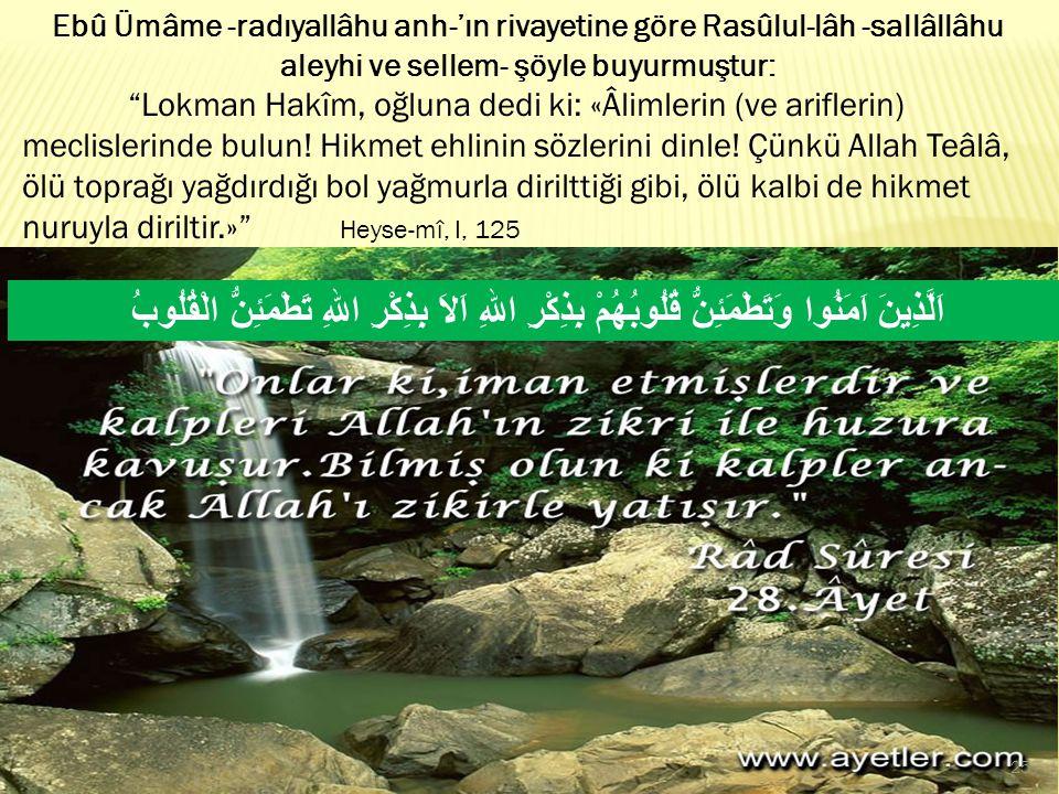"""Ebû Ümâme -radıyallâhu anh-'ın rivayetine göre Rasûlul-lâh -sallâllâhu aleyhi ve sellem- şöyle buyurmuştur: """"Lokman Hakîm, oğluna dedi ki: «Âlimlerin"""