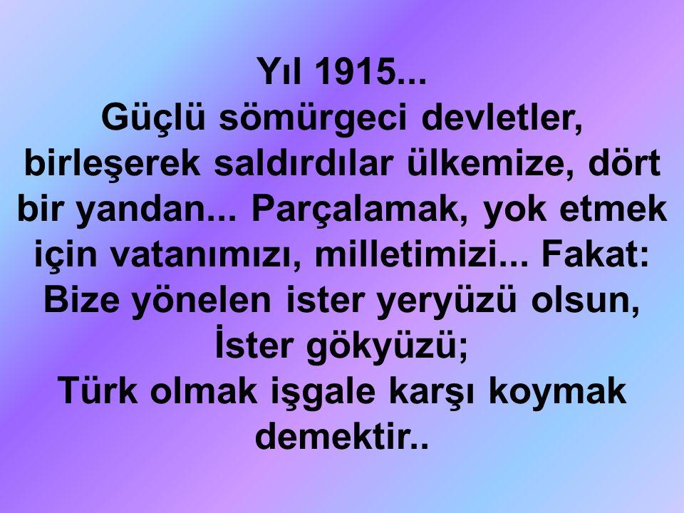 Yıl 1915... Güçlü sömürgeci devletler, birleşerek saldırdılar ülkemize, dört bir yandan... Parçalamak, yok etmek için vatanımızı, milletimizi... Fakat