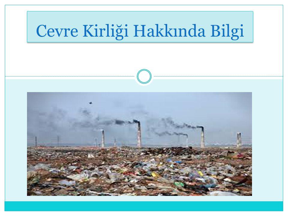 Çevre Kirliliği Nedir .