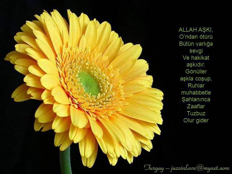ALLAH AŞKI, O'ndan ötürü Bütün varlığa sevgi Ve hakikat aşkıdır. Gönüller aşkla coşup, Ruhlar muhabbetle Şahlanınca Zaaflar Tuzbuz Olur gider