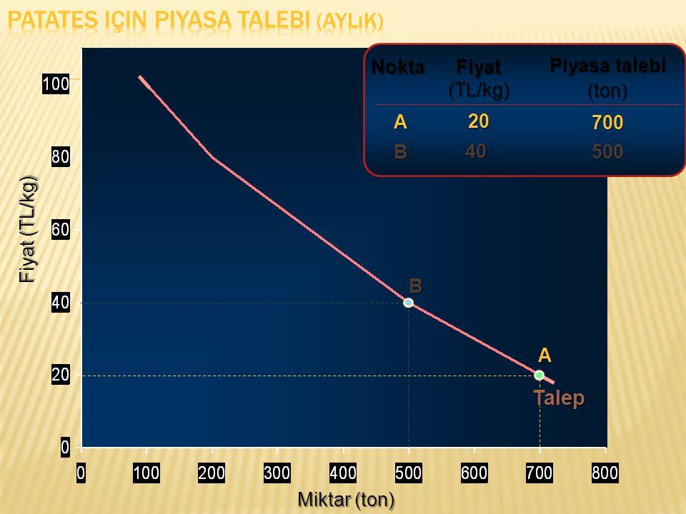 Miktar (ton) Fiyat (TL/kg) Fiyat (TL/kg) 20 Piyasa talebi (ton)700 A Nokta A Talep