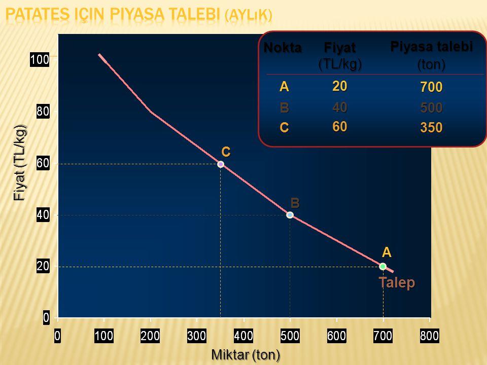 Miktar (ton) Fiyat (TL/kg) Fiyat (TL/kg) 2040 Piyasa talebi (ton)700500 AB Nokta A B Talep