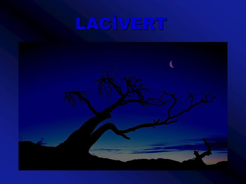 Günler, geceye dönüşürken gökyüzüne rengi ben veririm.