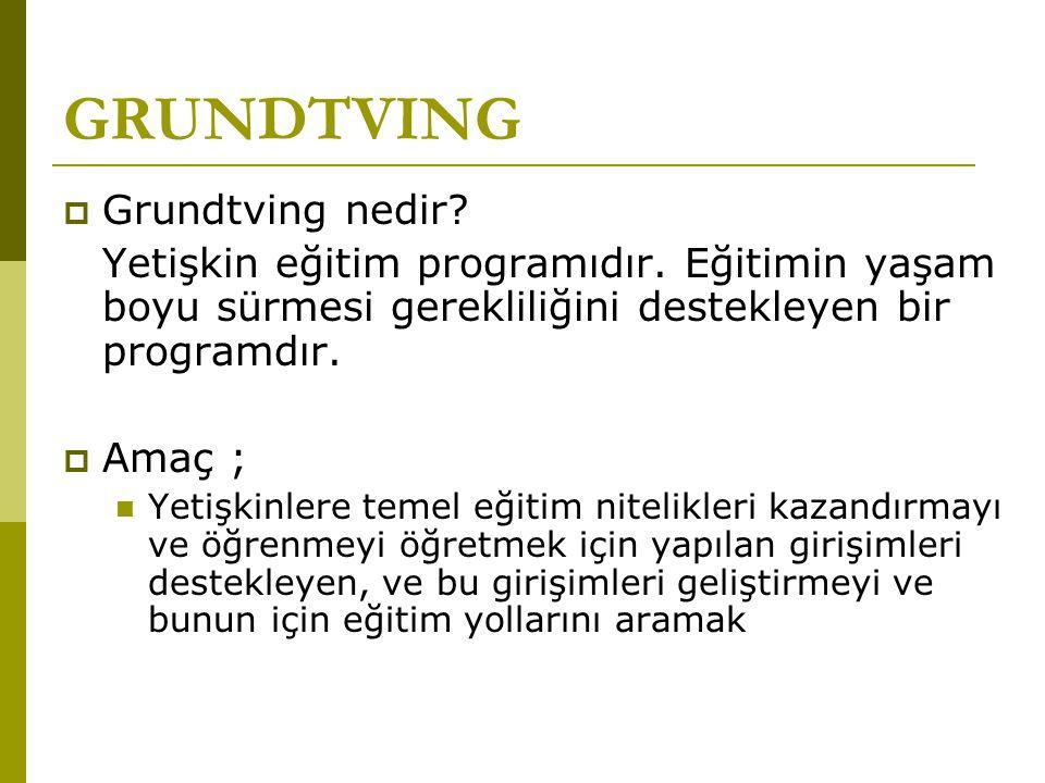 GRUNDTVING  Grundtving nedir? Yetişkin eğitim programıdır. Eğitimin yaşam boyu sürmesi gerekliliğini destekleyen bir programdır.  Amaç ; Yetişkinler