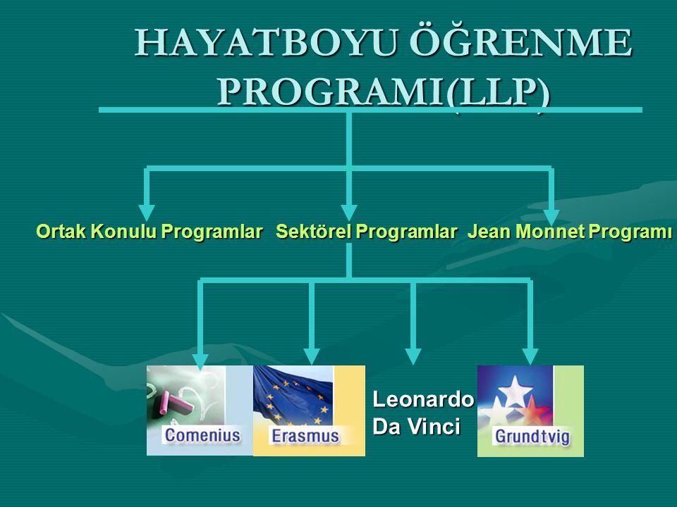 HAYATBOYU ÖĞRENME PROGRAMI(LLP) Sektörel Programlar Ortak Konulu Programlar Jean Monnet Programı Leonardo Da Vinci