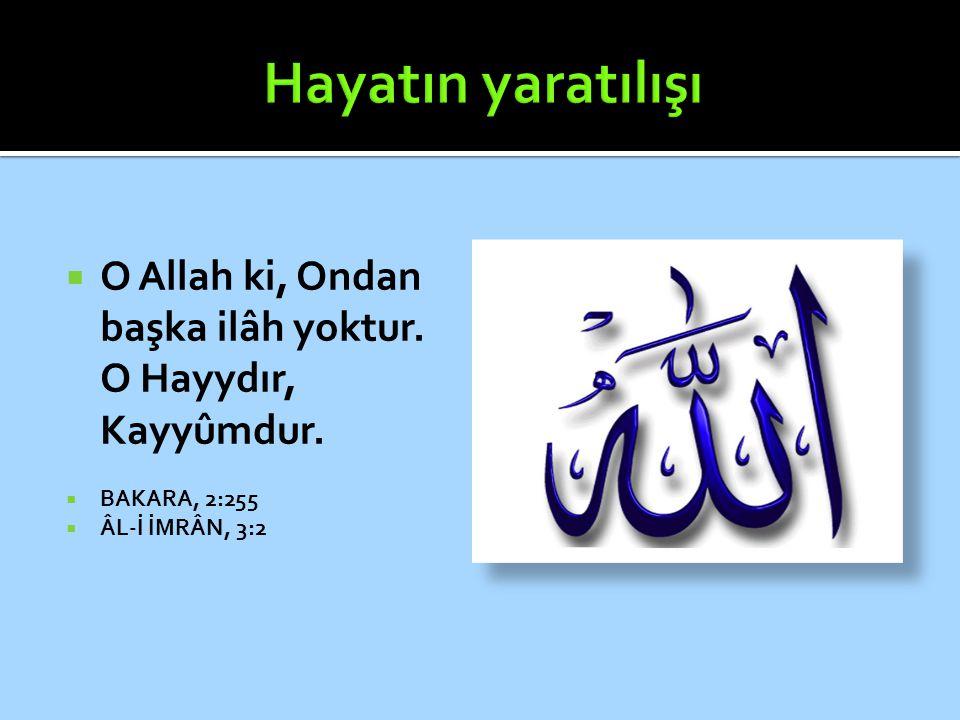  O Allah ki, Ondan başka ilâh yoktur. O Hayydır, Kayyûmdur.  BAKARA, 2:255  ÂL-İ İMRÂN, 3:2