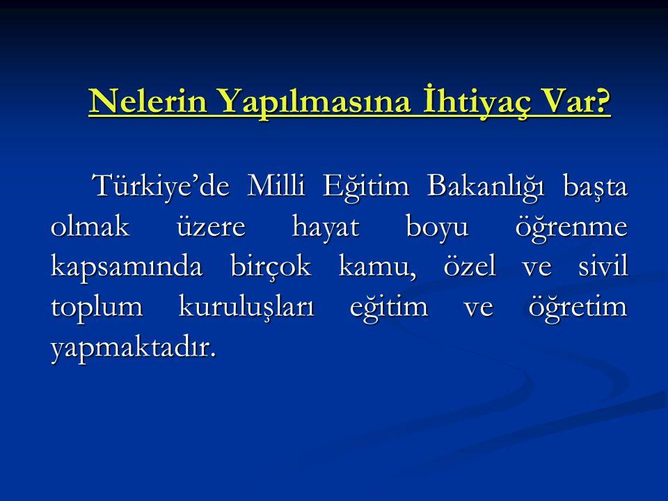 Nelerin Yapılmasına İhtiyaç Var? Türkiye'de Milli Eğitim Bakanlığı başta olmak üzere hayat boyu öğrenme kapsamında birçok kamu, özel ve sivil toplum k