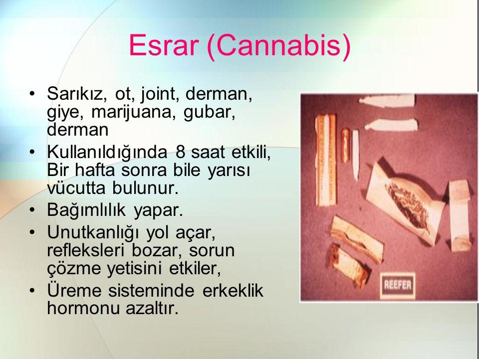 Esrar (Cannabis) Sarıkız, ot, joint, derman, giye, marijuana, gubar, derman Kullanıldığında 8 saat etkili, Bir hafta sonra bile yarısı vücutta bulunur.