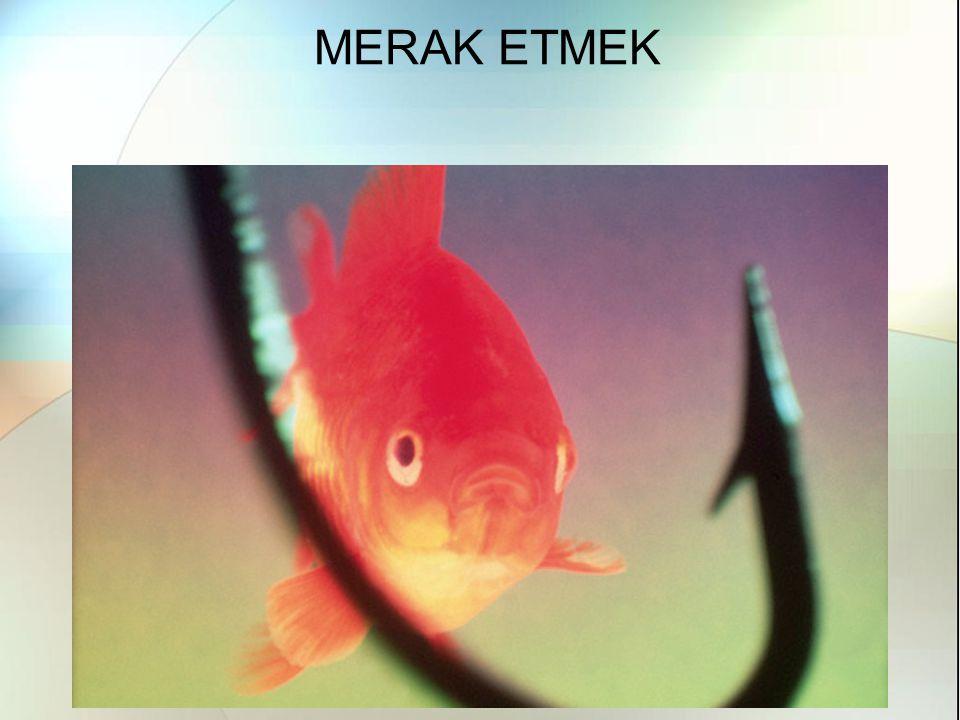 MERAK ETMEK