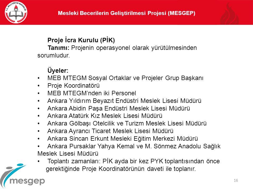 16 Proje İcra Kurulu (PİK) Tanımı: Projenin operasyonel olarak yürütülmesinden sorumludur. Üyeler: MEB MTEGM Sosyal Ortaklar ve Projeler Grup Başkanı