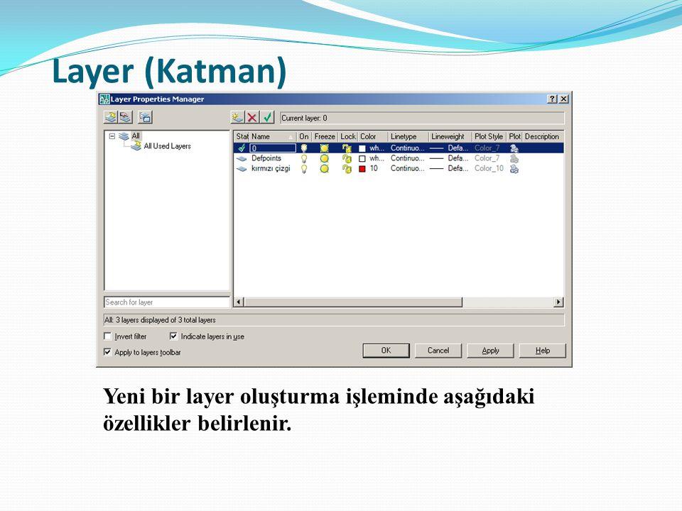 Layer (Katman) Yeni bir layer oluşturma işleminde aşağıdaki özellikler belirlenir.