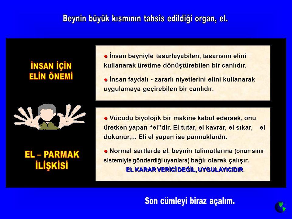 ● ● İnsan beyniyle tasarlayabilen, tasarısını elini kullanarak üretime dönüştürebilen bir canlıdır. ● ● İnsan faydalı - zararlı niyetlerini elini kull