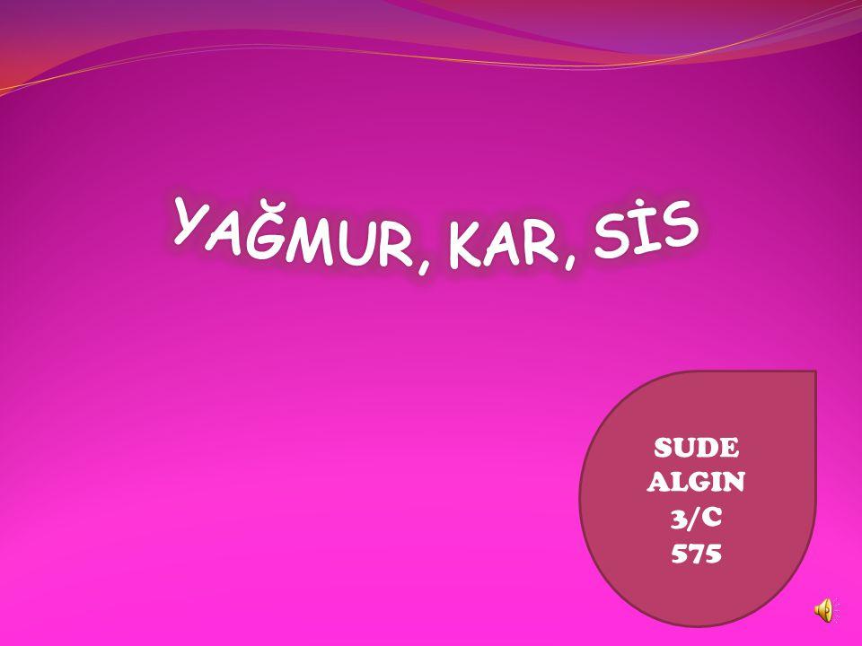 SUDE ALGIN 3/C 575