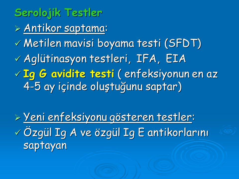 Serolojik Testler  Antikor saptama: Metilen mavisi boyama testi (SFDT) Metilen mavisi boyama testi (SFDT) Aglütinasyon testleri, IFA, EIA Aglütinasyo
