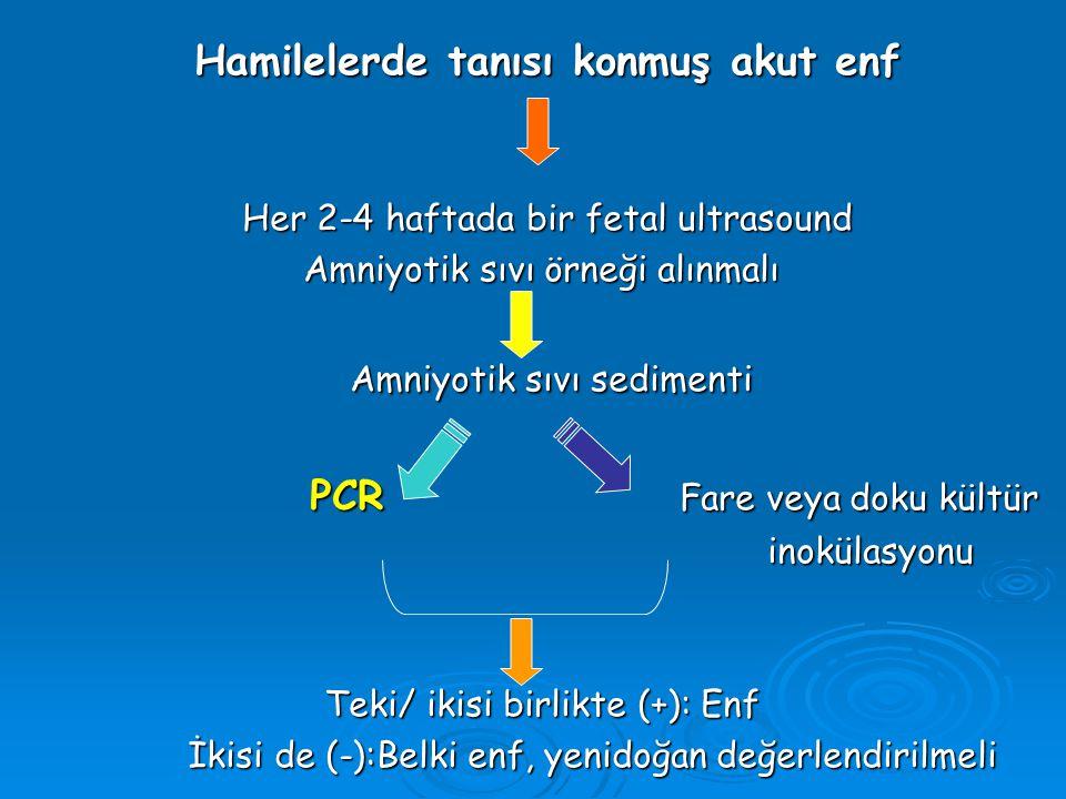 Hamilelerde tanısı konmuş akut enf Her 2-4 haftada bir fetal ultrasound Amniyotik sıvı örneği alınmalı Amniyotik sıvı örneği alınmalı Amniyotik sıvı s