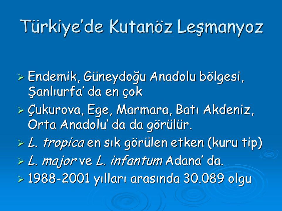 Türkiye'de Kutanöz Leşmanyoz  Endemik, Güneydoğu Anadolu bölgesi, Şanlıurfa' da en çok  Çukurova, Ege, Marmara, Batı Akdeniz, Orta Anadolu' da da gö