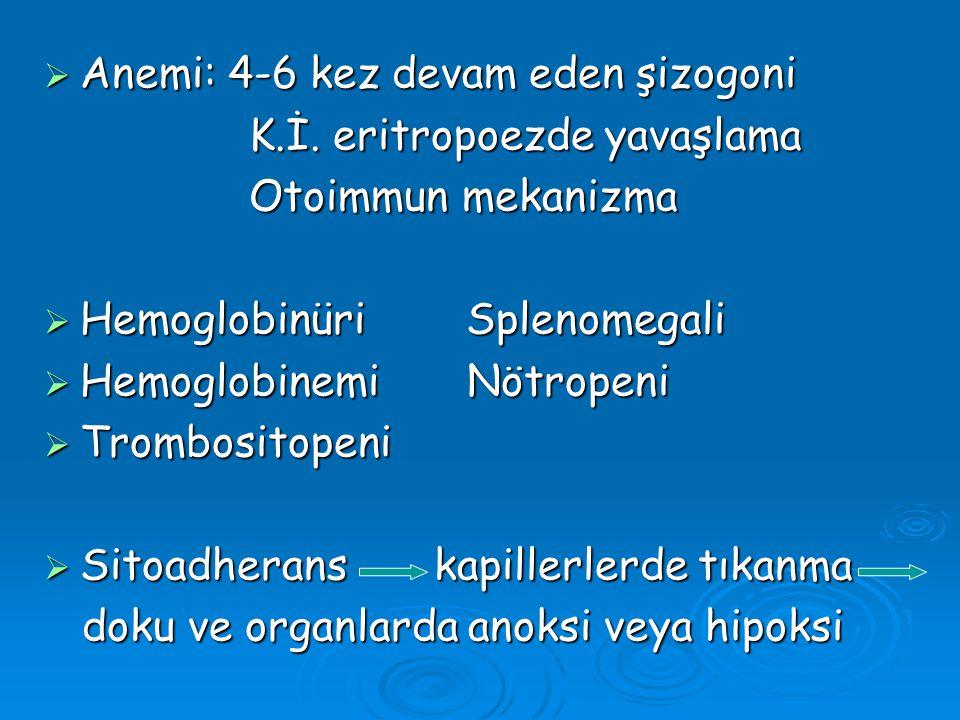  Anemi: 4-6 kez devam eden şizogoni K.İ. eritropoezde yavaşlama K.İ. eritropoezde yavaşlama Otoimmun mekanizma Otoimmun mekanizma  Hemoglobinüri Spl