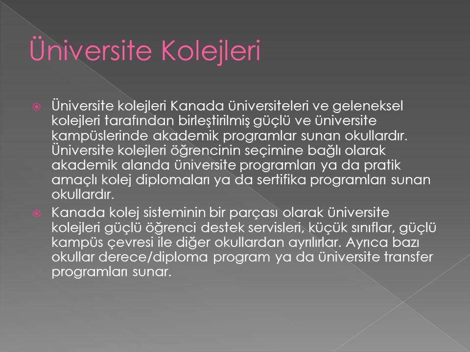  Üniversite kolejleri Kanada üniversiteleri ve geleneksel kolejleri tarafından birleştirilmiş güçlü ve üniversite kampüslerinde akademik programlar s