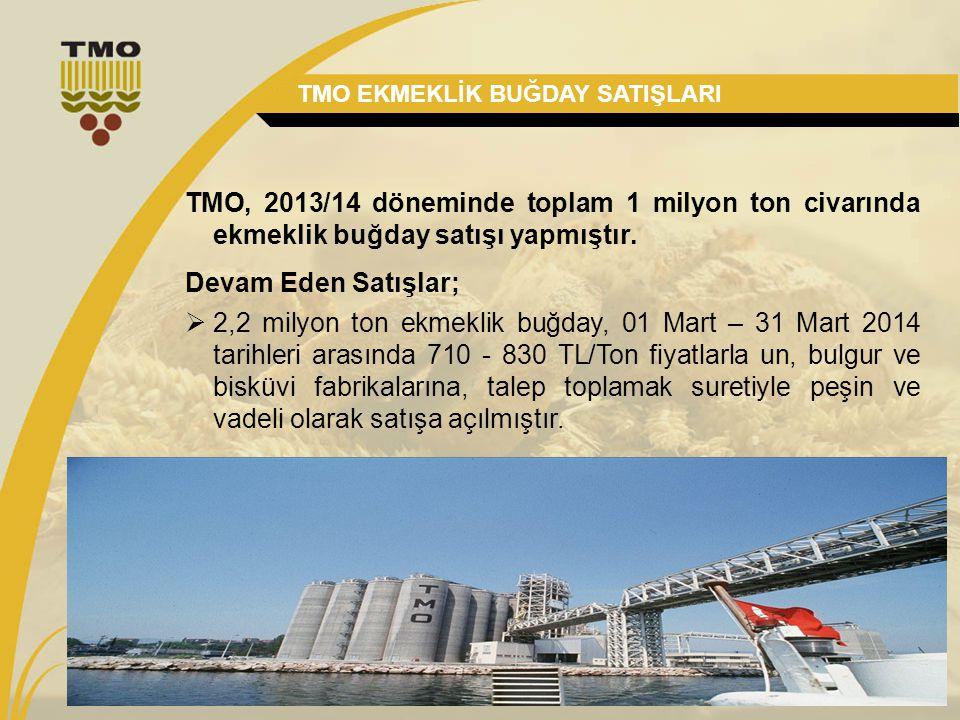 18 TMO EKMEKLİK BUĞDAY SATIŞLARI TMO, 2013/14 döneminde toplam 1 milyon ton civarında ekmeklik buğday satışı yapmıştır. Devam Eden Satışlar;  2,2 mil