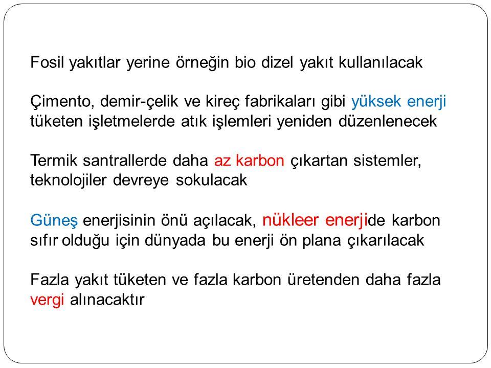 Kyoto Protokolü Türkiye'de 05.02.2009 tarihinde, TBMM Genel Kurulunda kabul edilerek yasalaştı.