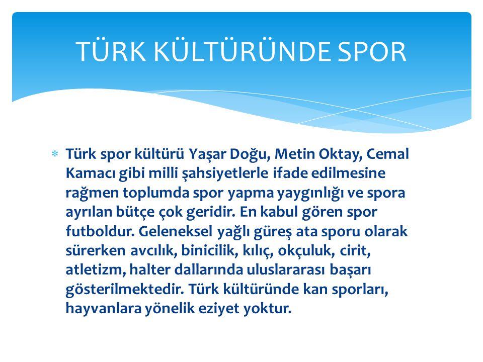  Türk spor kültürü Yaşar Doğu, Metin Oktay, Cemal Kamacı gibi milli şahsiyetlerle ifade edilmesine rağmen toplumda spor yapma yaygınlığı ve spora ayrılan bütçe çok geridir.