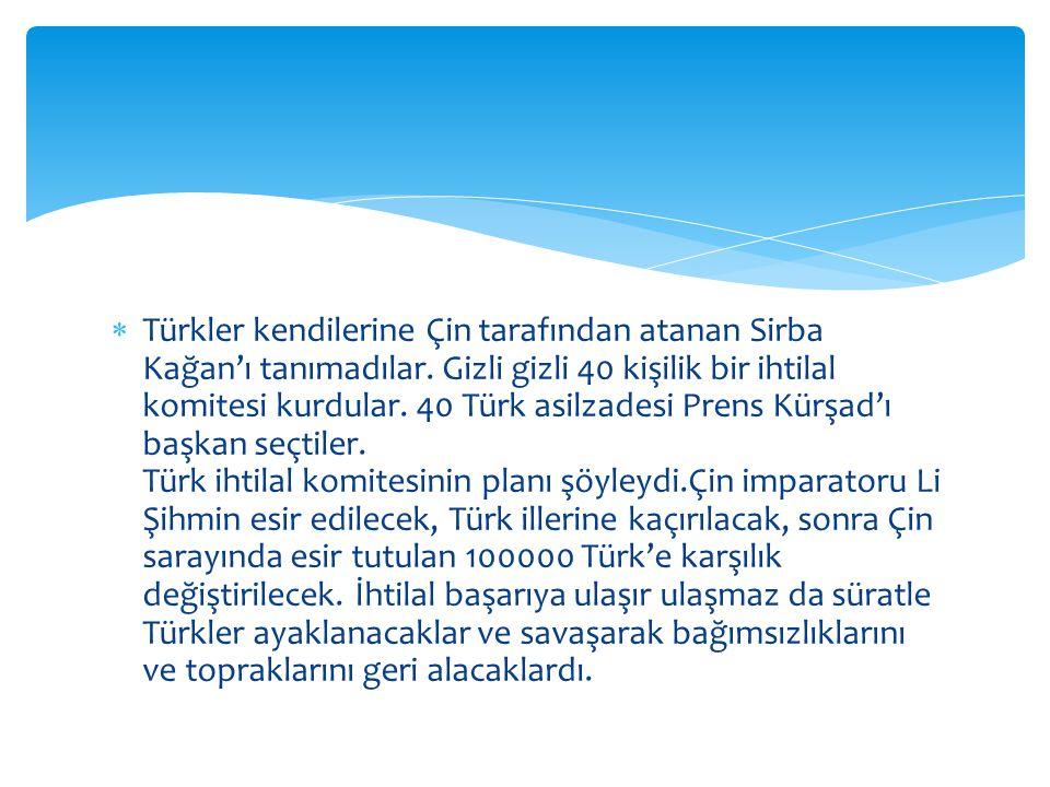  Türkler kendilerine Çin tarafından atanan Sirba Kağan'ı tanımadılar.