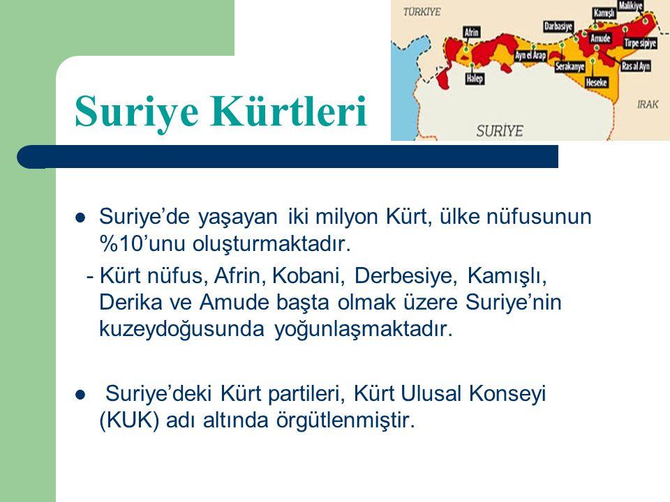 Demokratik Birlik Partisi (PYD) 2003 sonrası Suriye'de hızla örgütlenmiştir. PKK/KCK'nın Suriye yapılanması olarak örgütün eleman kaynağını oluşturmuş