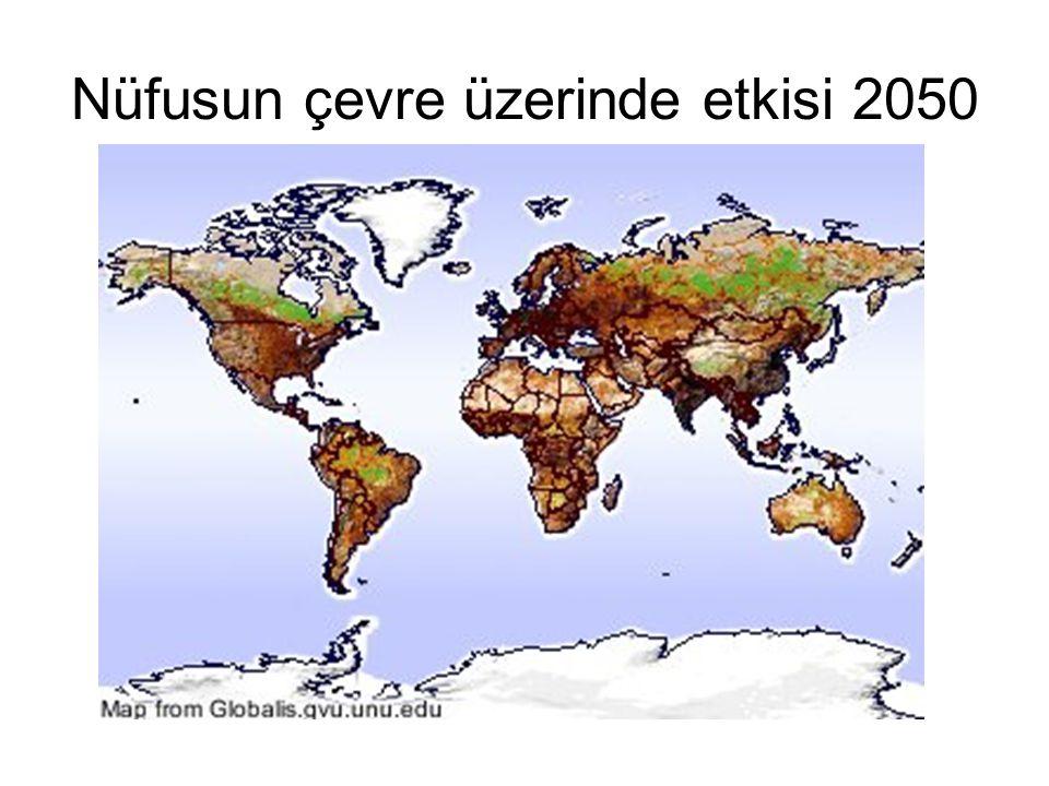Nüfusun çevre üzerinde etkisi 2050