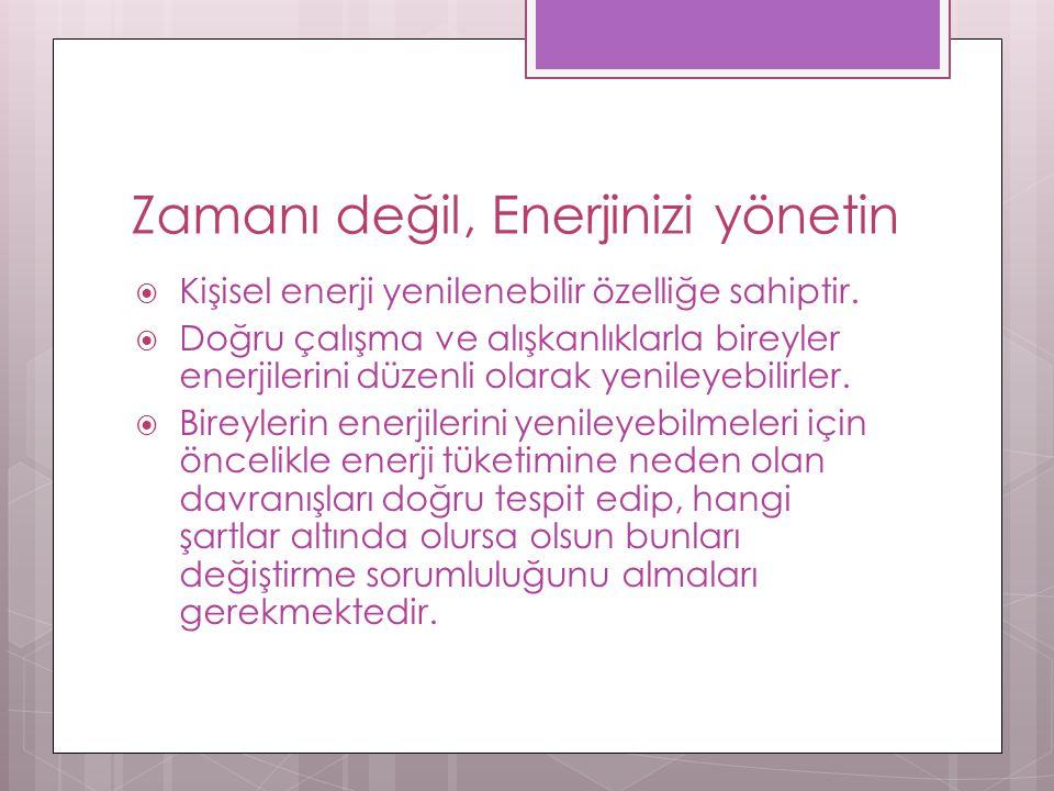 Enerji alanları  Vücut: Fiziksel enerji  Duygu: Enerji kalitesi  Zihin: Enerji odağı  Ruh: Anlam ve amaç enerjisi