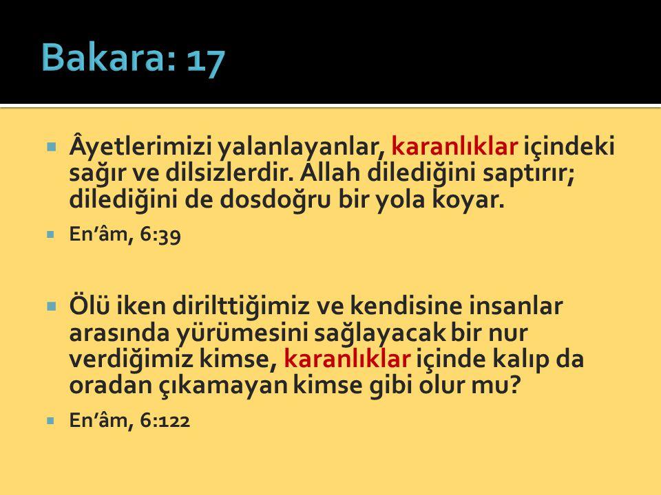  Allah, iman edenlerin dostu ve yardımcısıdır; onları karanlıklardan nura çıkarır.