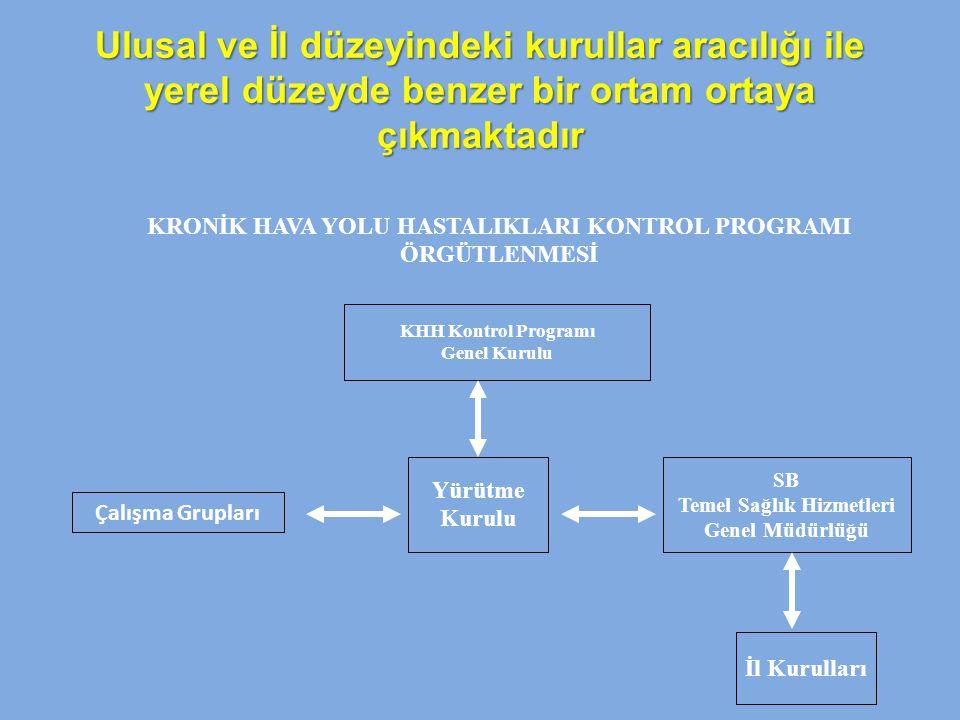 Ulusal ve İl düzeyindeki kurullar aracılığı ile yerel düzeyde benzer bir ortam ortaya çıkmaktadır KRONİK HAVA YOLU HASTALIKLARI KONTROL PROGRAMI ÖRGÜT