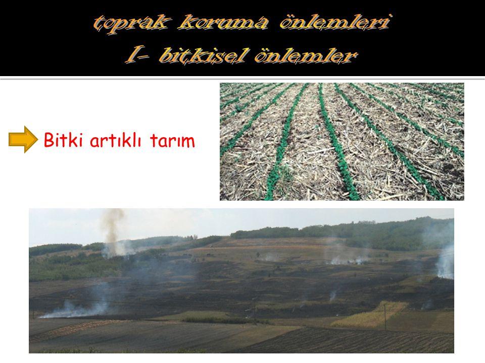 Bitki artıklı tarım