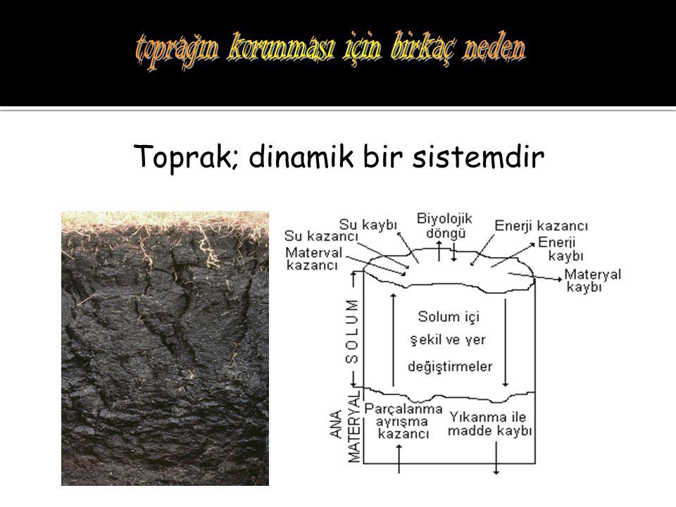 Toprak; çok uzun sürede oluşun, ancak kısa sürede kayıp olan, değerli ve yaşam için gerekli, kıt bir kaynaktır.
