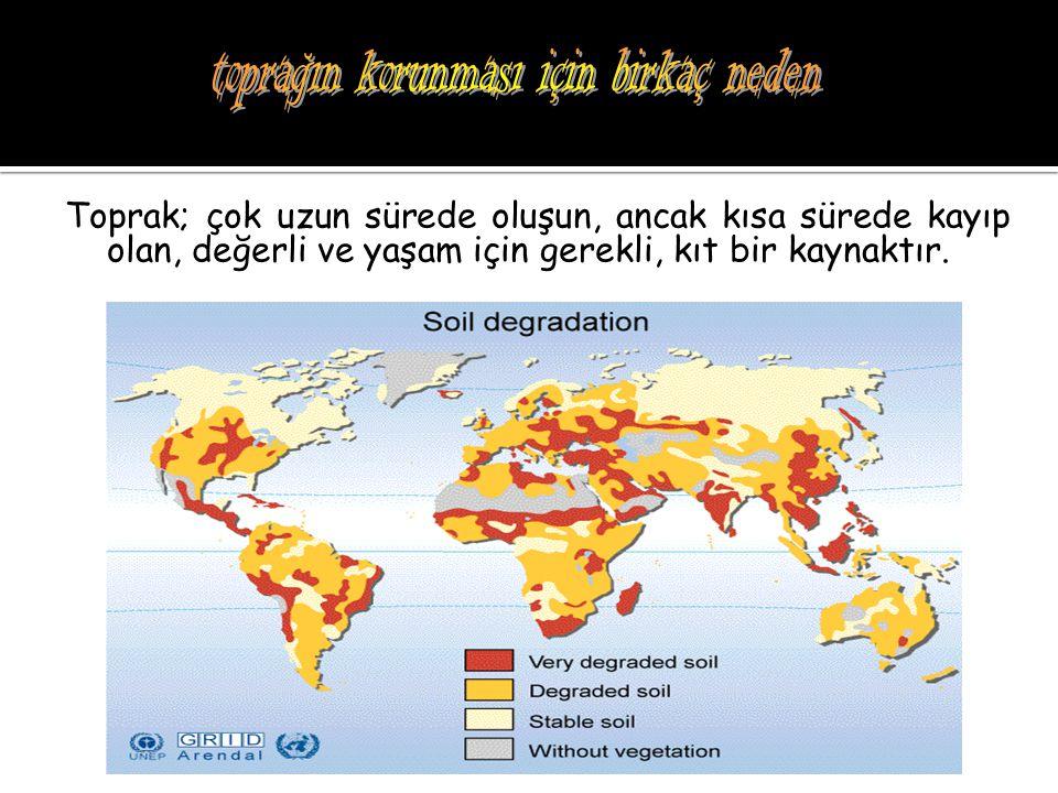  Orman arazilerini toprak işlemeli tarım alanına dönüştürmemek  Orman yangınlarına engel olmak  Kaçak kesimler yapmamak  Orman içi otlatmaları engellenmek