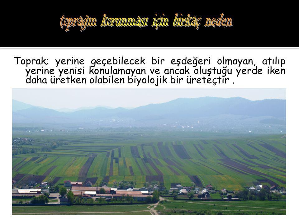 Toprak; yerine geçebilecek bir eşdeğeri olmayan, atılıp yerine yenisi konulamayan ve ancak oluştuğu yerde iken daha üretken olabilen biyolojik bir üre