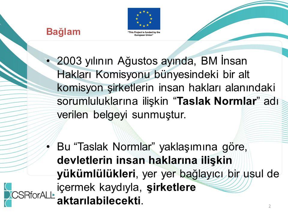 Bağlam 2003 yılının Ağustos ayında, BM İnsan Hakları Komisyonu bünyesindeki bir alt komisyon şirketlerin insan hakları alanındaki sorumluluklarına ili