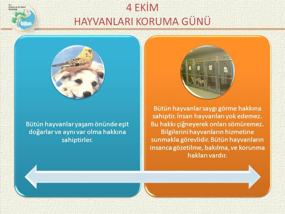 4 EKİM HAYVANLARI KORUMA GÜNÜ Hiçbir hayvana kötü davranılamaz, acımasız ve zalimce eylem yapılamaz.