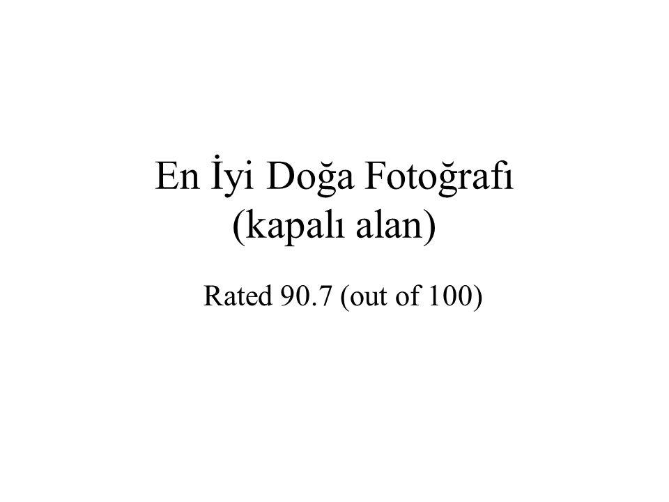 En İyi Doğa Fotoğrafı (kapalı alan) Rated 90.7 (out of 100)