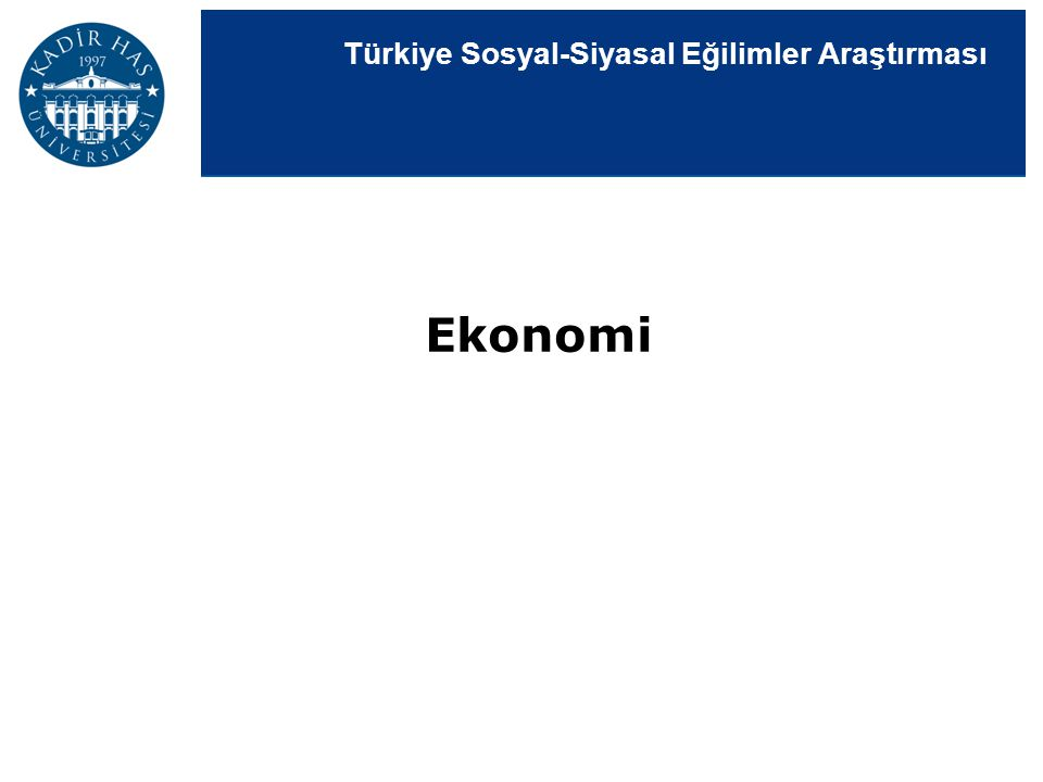 Türkiye Sosyal-Siyasal Eğilimler Araştırması Ekonomi