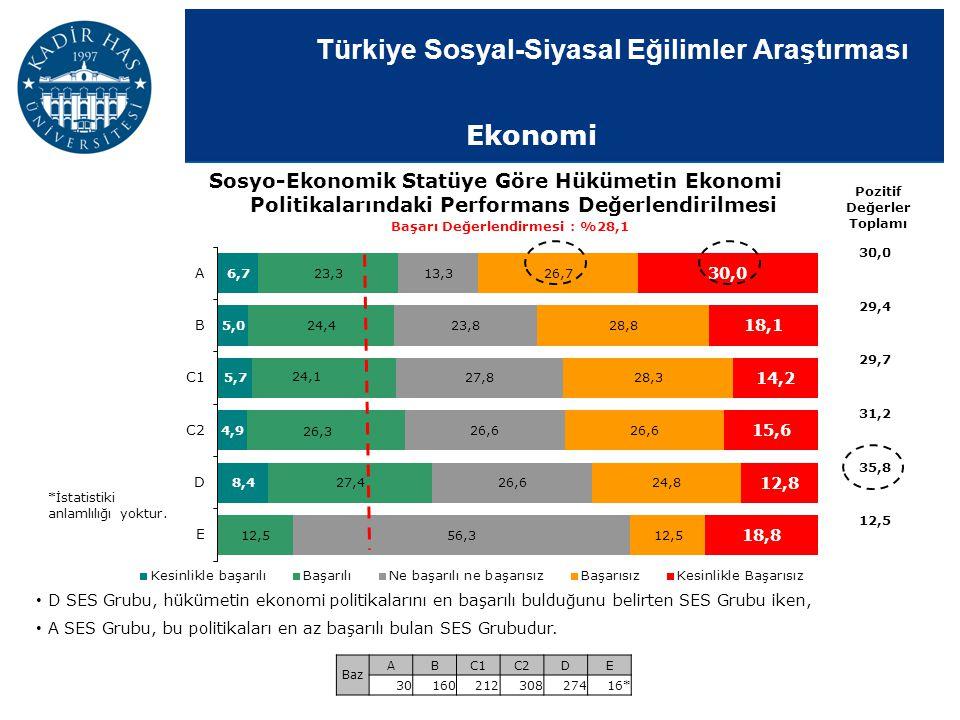 Türkiye Sosyal-Siyasal Eğilimler Araştırması Sosyo-Ekonomik Statüye Göre Hükümetin Ekonomi Politikalarındaki Performans Değerlendirilmesi Pozitif Değe