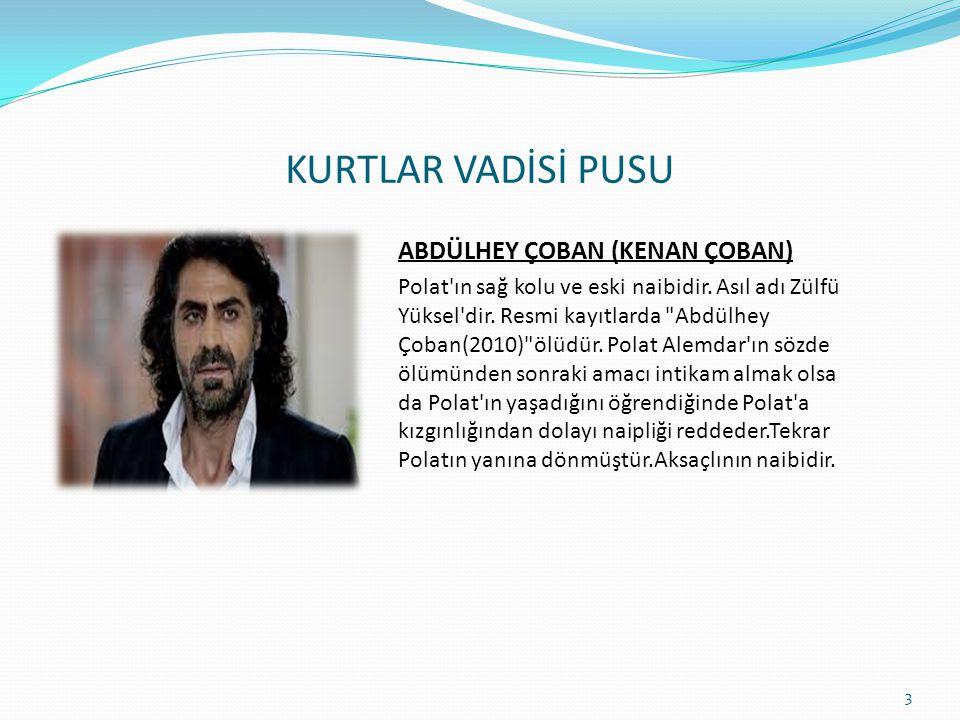 KURTLAR VADİSİ PUSU POLAT ALEMDAR (NECATİ ŞAŞMAZ) 2005 yılında vefat eden iş adamı ve mafya babası Mehmet Karahanlı ve Nergis Karahanlı'nın müşterek ö