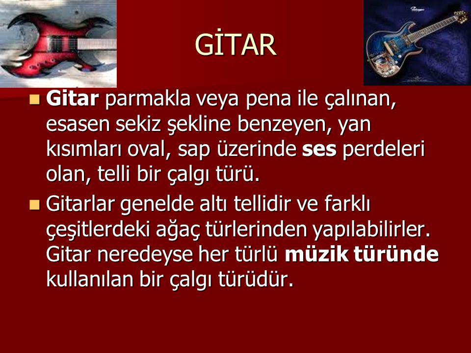 BAĞLAMA Türk Halk Müziğinde yaygın olarak kullanılan çalgı türüdür.